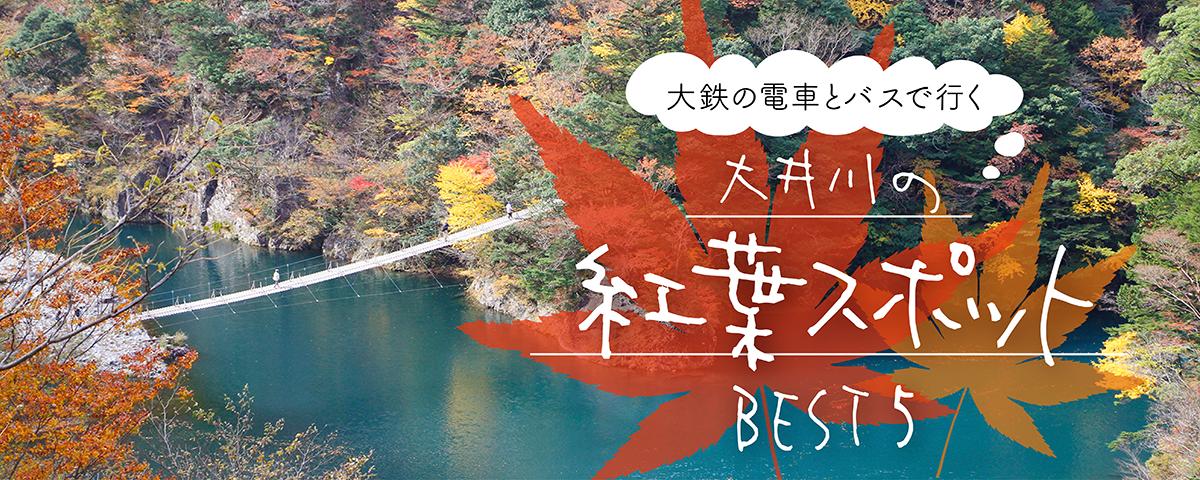 大井川の紅葉スポットBEST5