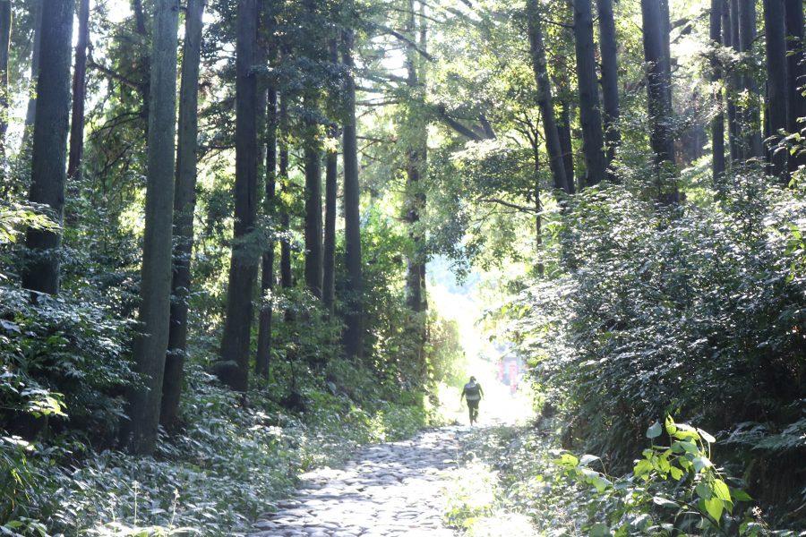 雨上がりでも子ども連れで楽しめる♪旧東海道の石畳散歩
