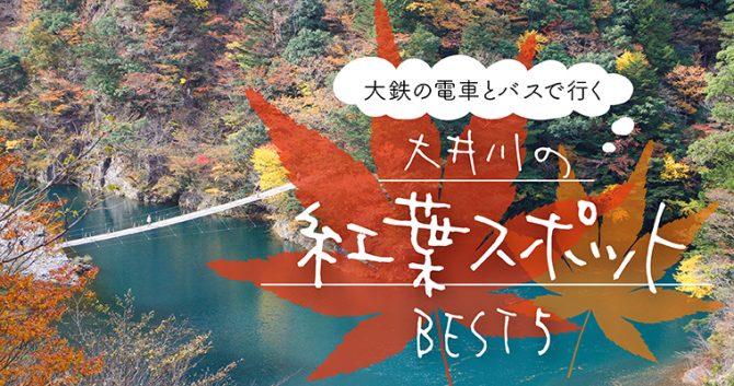 大鉄の電車とバスで行く大井川の紅葉スポットBEST5