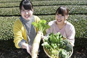 今度の休みは、大井川の『農家民宿』に泊まってみませんか?