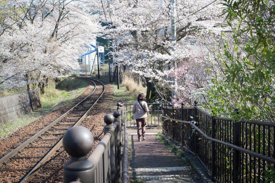 カメラを持って大井川に出かけよう!(第5章)