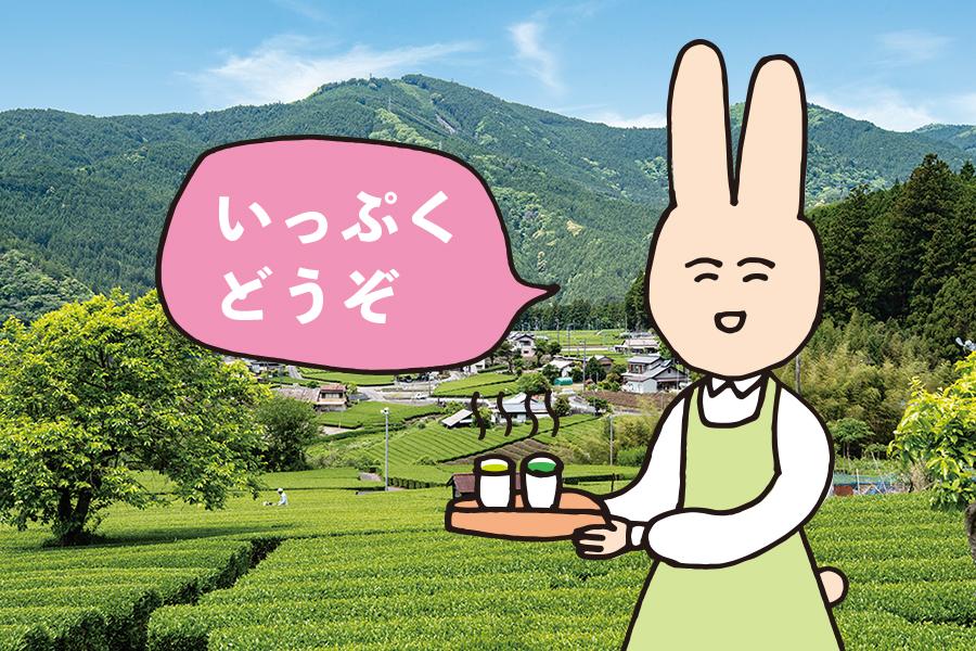 【キャンペーン】試飲できます、大井川のお茶!