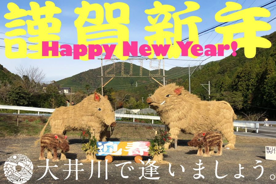 あけましておめでとうございます!2019年の大井川オススメあそび体験ベスト3
