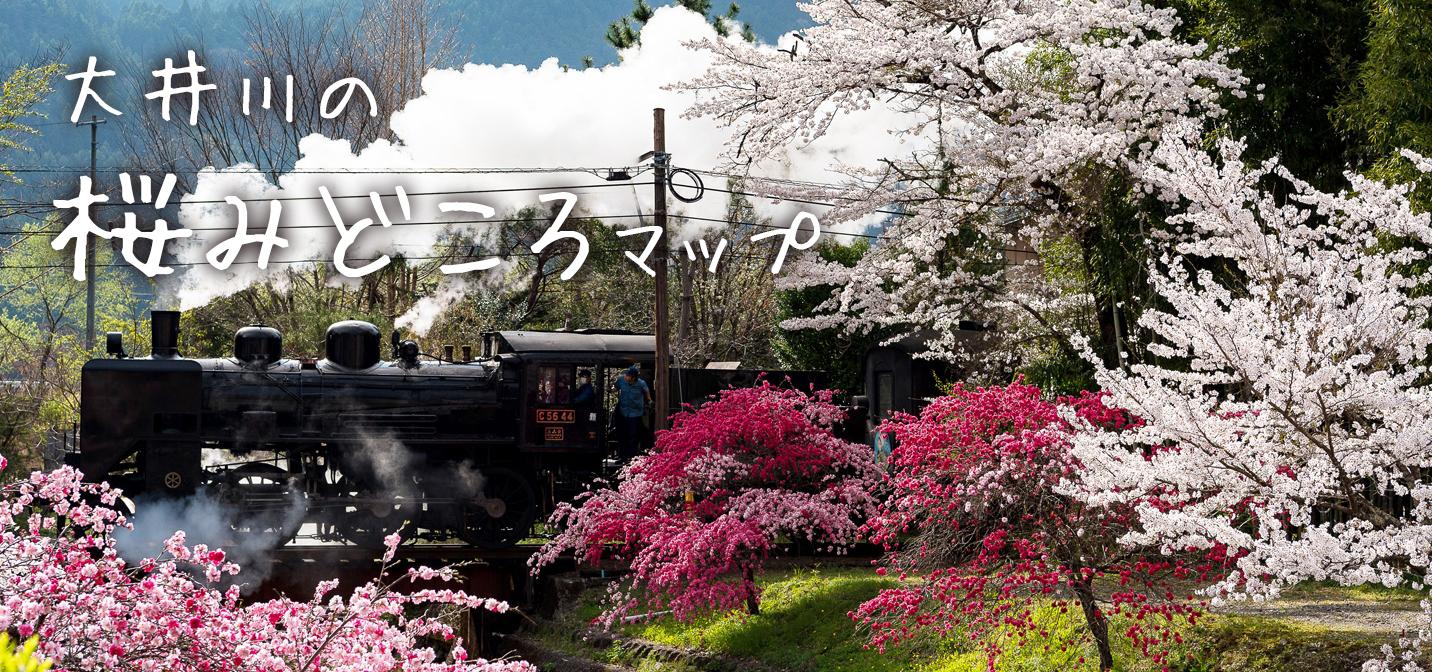 大井川の桜みどころマップ