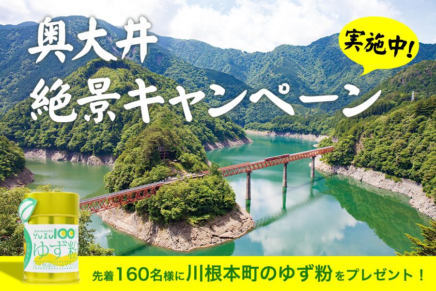 奥大井絶景キャンペーン実施中!