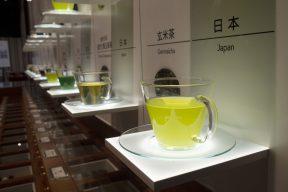 大井川の春を撮る その4-2ーふじのくに茶の都ミュージアム