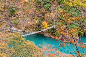 秋は奥大井で紅葉と温泉三昧!カップルにオススメの1泊2日モデルコース